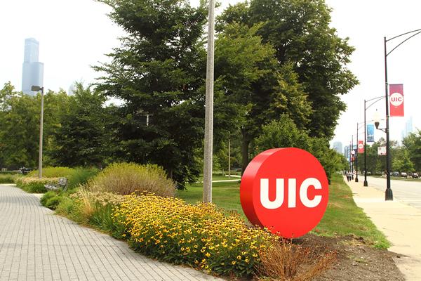 UIC bug in campus scene